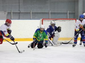 Двенадцатилетние хоккеисты из Зябликова выиграли чемпионат МосквыДвенадцатилетние хоккеисты из Зябликова выиграли чемпионат Москвы