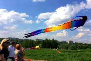 Запуск воздушных змеев