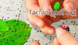 В Москве появится уникальный сад для слепых и слабовидящих людей