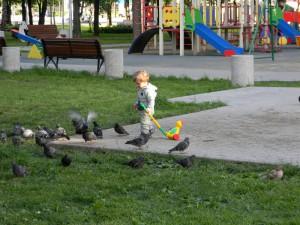 Один из дворов в районе Орехово-Борисово Южное