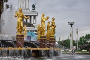 В честь 5-летия центров государственных услуг на ВДНХ в Москве проведут состязания по олимпийской системе