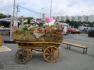 На площадке фестиваля «Золотая осень» на Ореховом бульваре