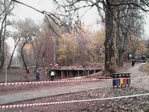 Благоустройство территории Бирюлевского дендропарка у пруда «Шоколадка»