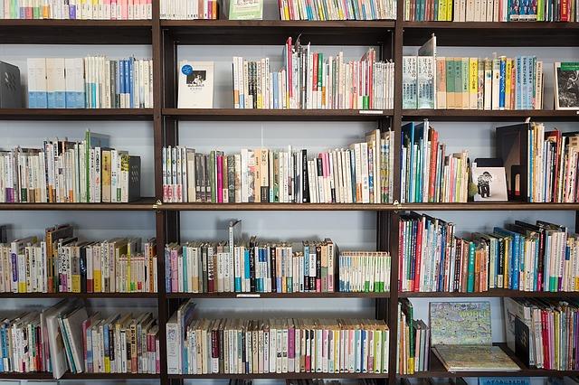 полки, книги, пиксабай