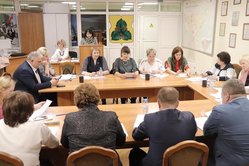 Совет депутатов, Орехово-Борисово Южное, заседание
